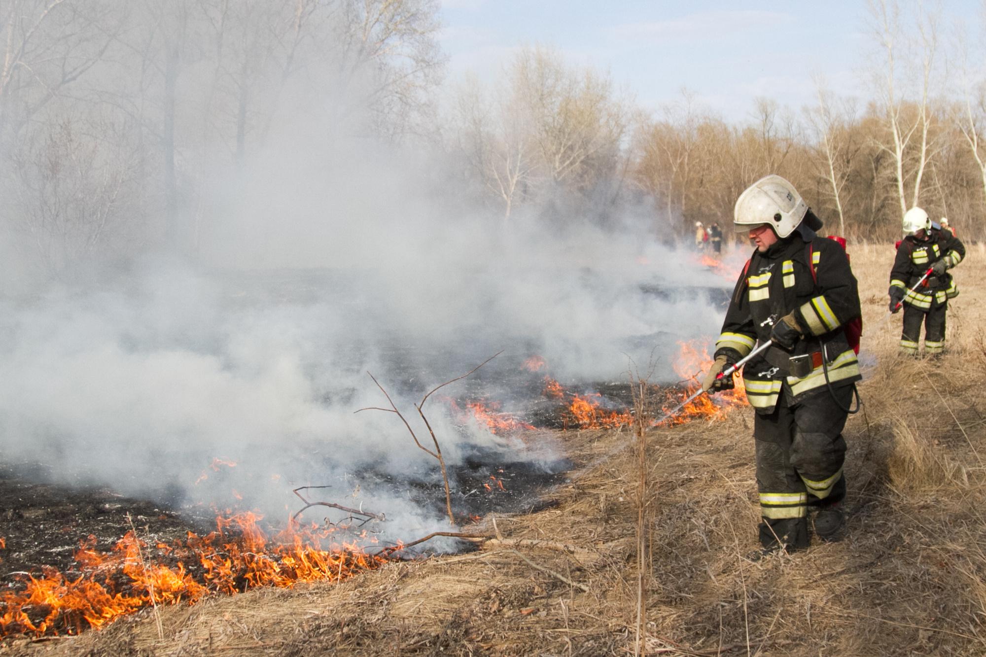Жителей юга Омской области предупреждают о страшных пожарах #Новости #Общество #Омск