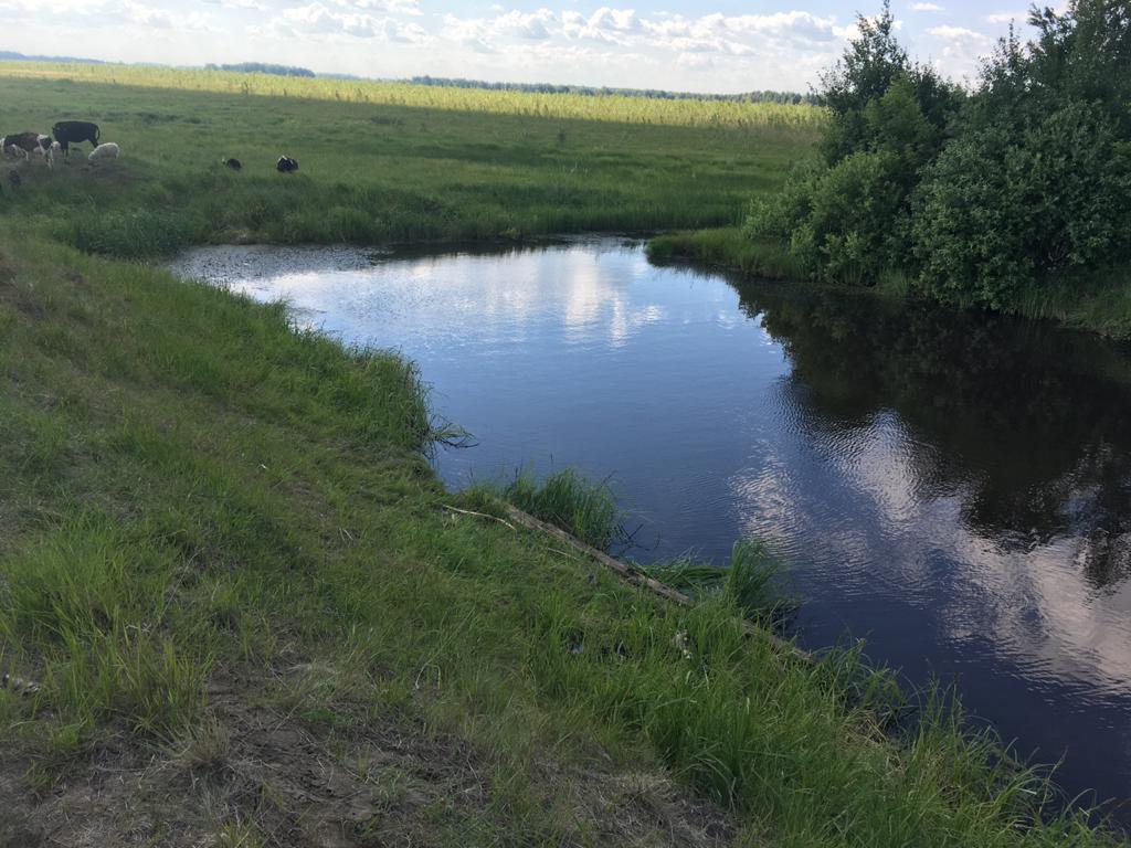 В Омской области утонула 12-летняя девочка: отец не успел ее спасти #Омск #Общество #Сегодня