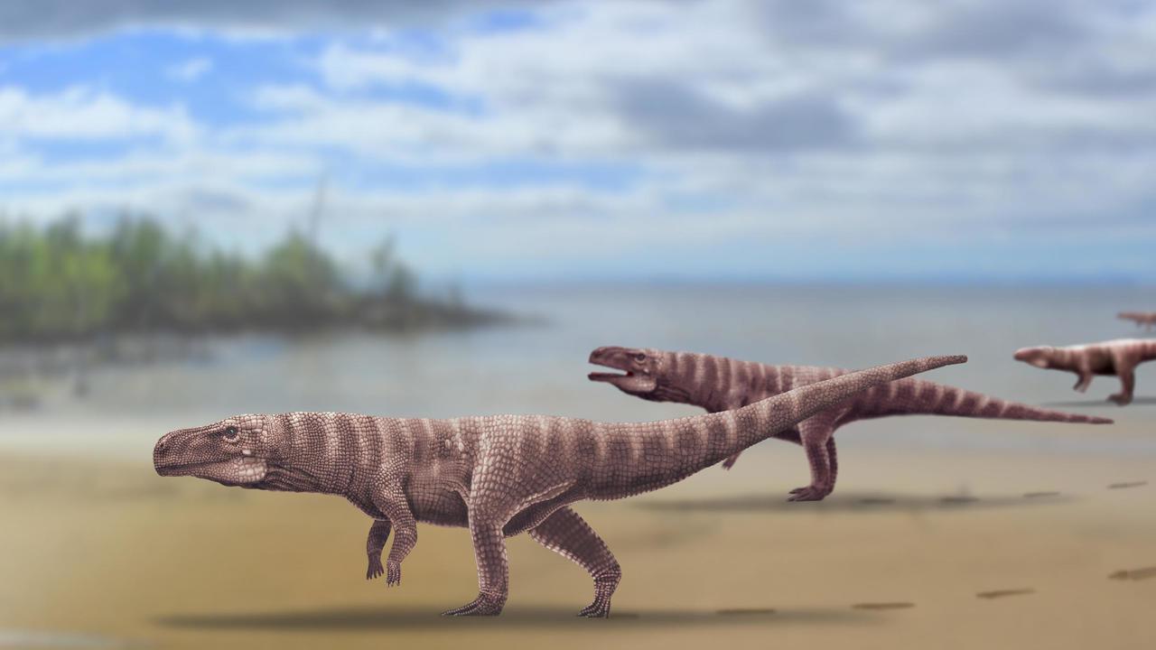 Эти древние крокодилы ходили на двух ногах, как динозавры