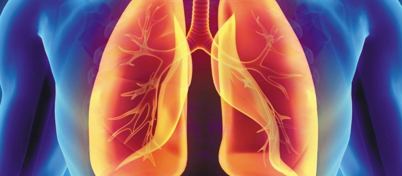Что происходит с пылью, которую мы вдыхаем?