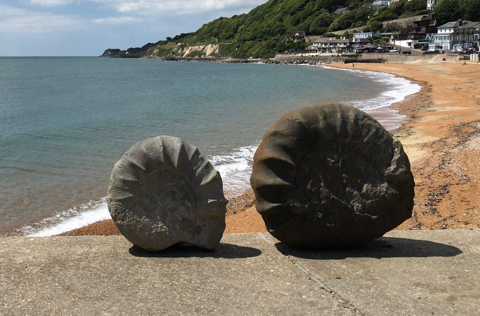 Два студента обнаружили в Англии огромное 96-килограммовое ископаемое аммонита