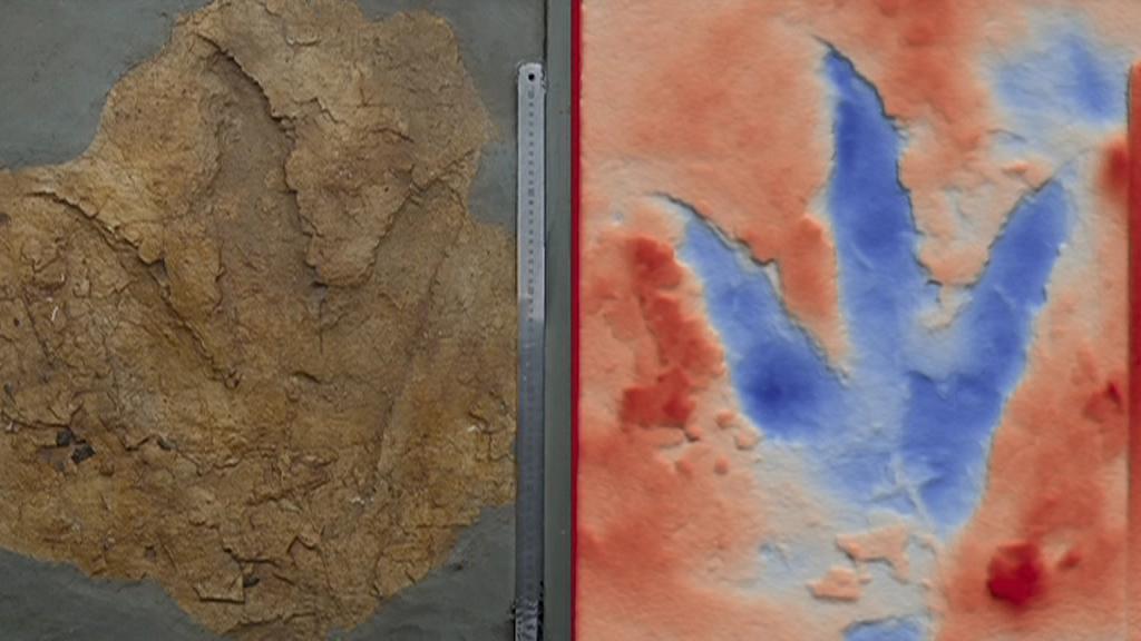 Гигантские динозавры бродили по Австралии в юрский период