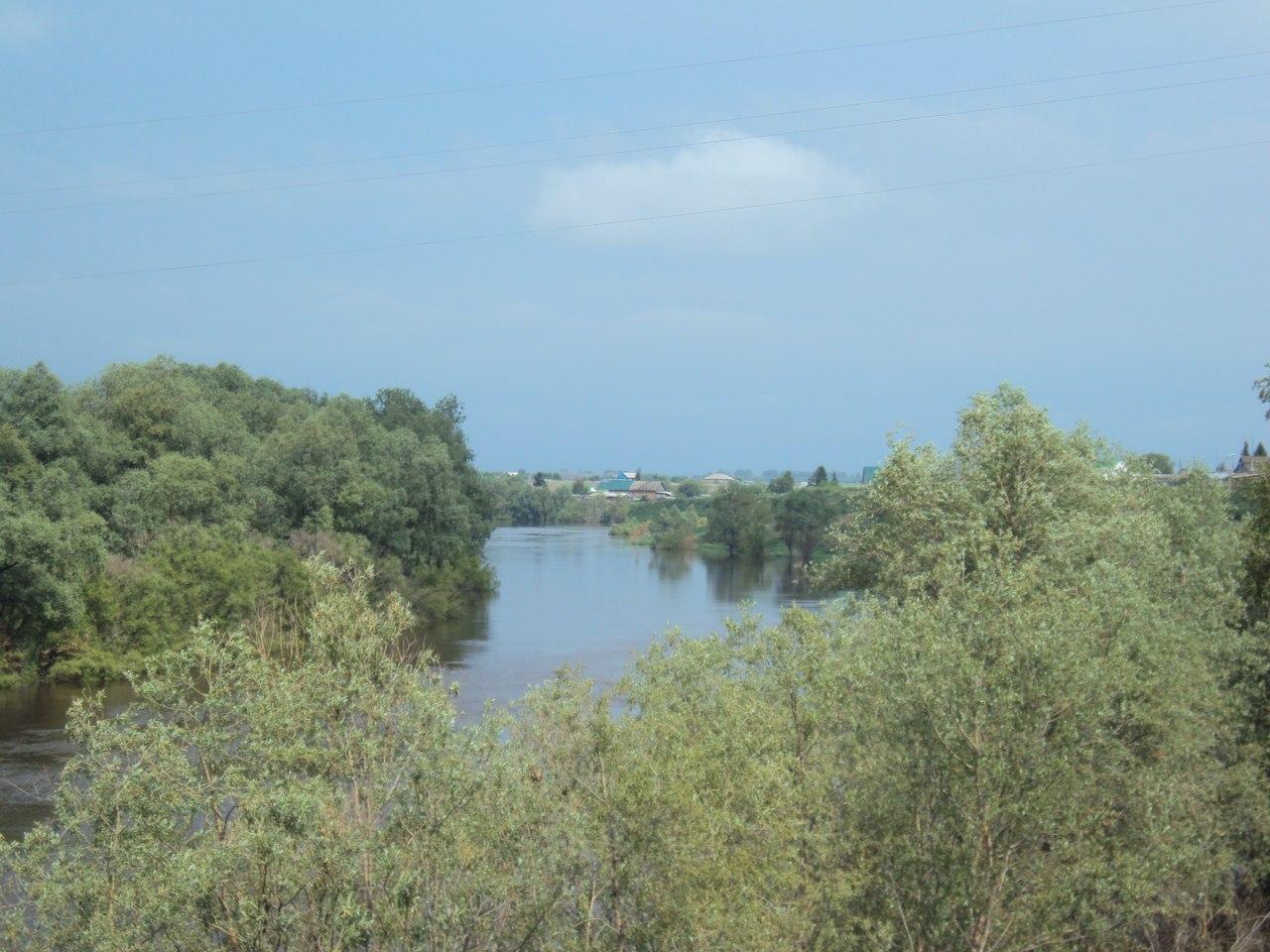 Омичей ждут 10 дней испепеляющей жары #Новости #Общество #Омск