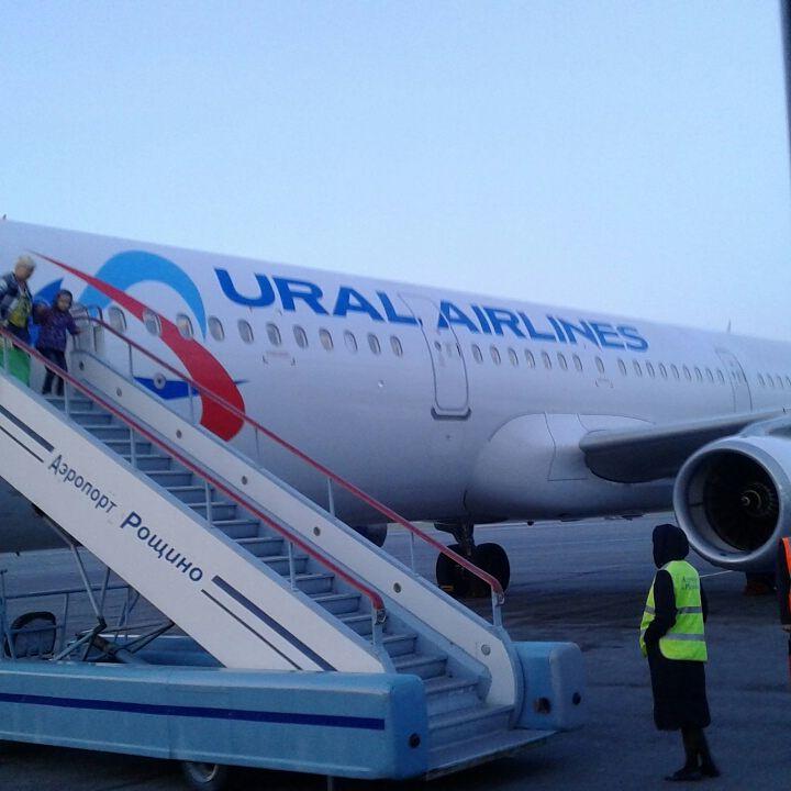 Глава российского Минздрава предложил возобновить международное авиасообщение #Новости #Общество #Омск