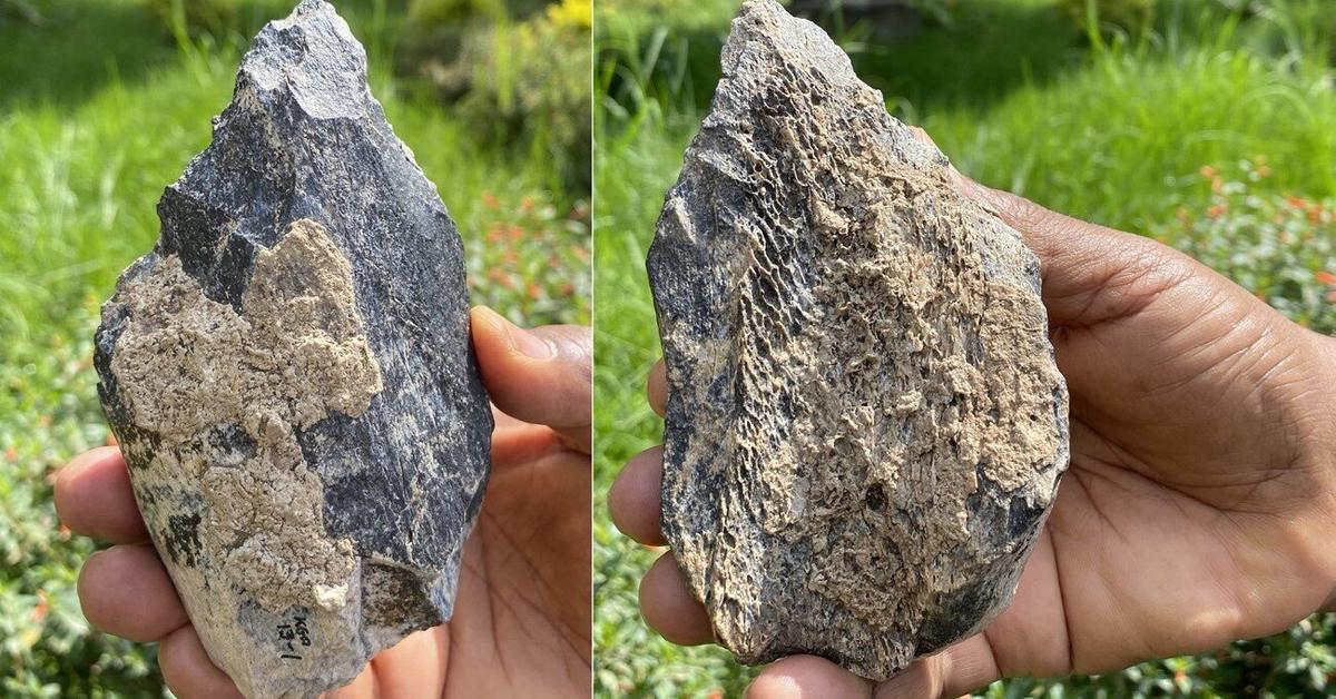 Обнаружение топора из кости бегемота, возраст которого 1,4 миллиона лет.