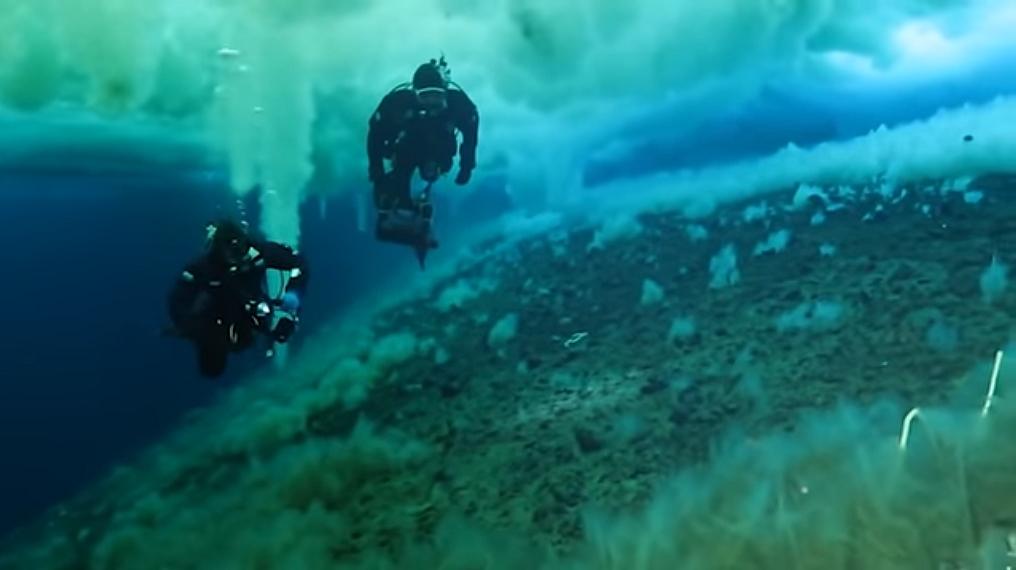 Обнаружение «утечки» метана возле Антарктиды озадачивает ученых