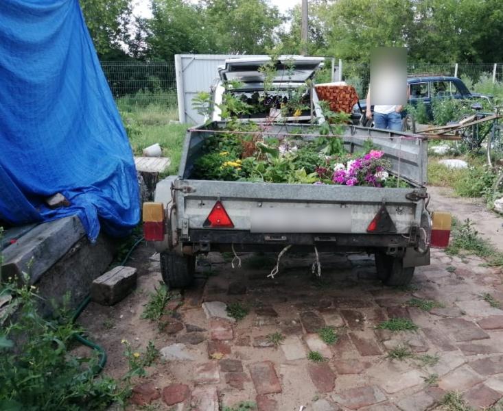 Двое омичей болгаркой спилили ворота гаражей и увезли их на чужом прицепе #Омск #Общество #Сегодня
