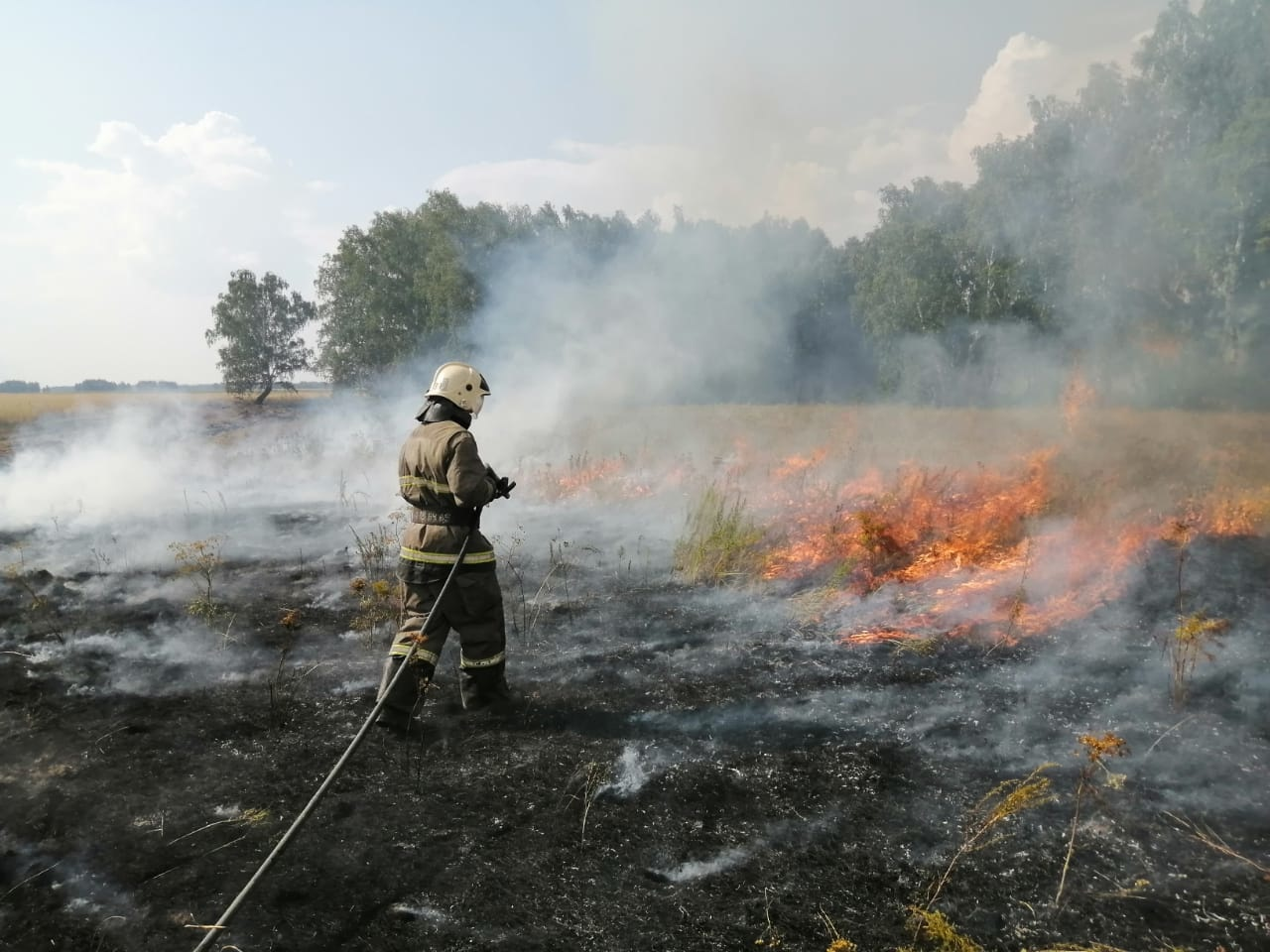 В Омской области сгорело «сто футбольных полей» травы #Новости #Общество #Омск