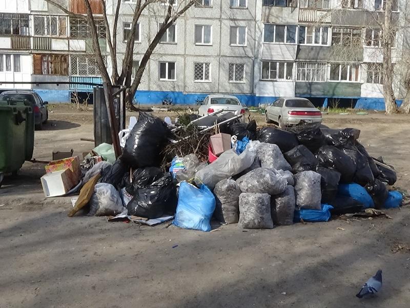 В Омске собираются закрыть 2 крупные свалки #Омск #Общество #Сегодня