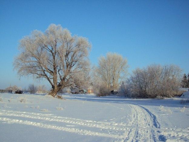 Синоптики спрогнозировали погодные аномалии на зиму в Омской области #Новости #Общество #Омск