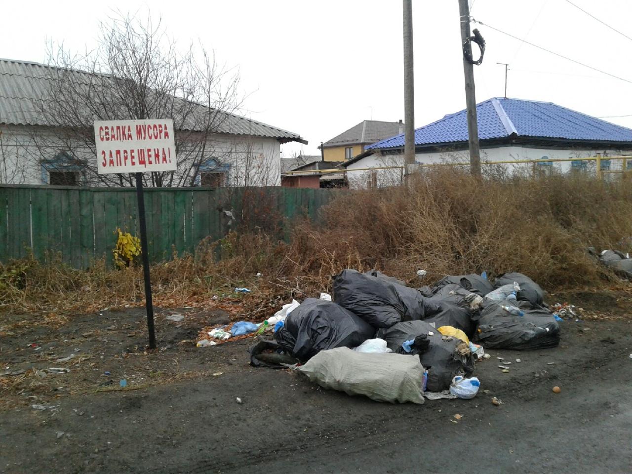 В Омской области внедрение раздельного сбора мусора отложили на год #Омск #Общество #Сегодня