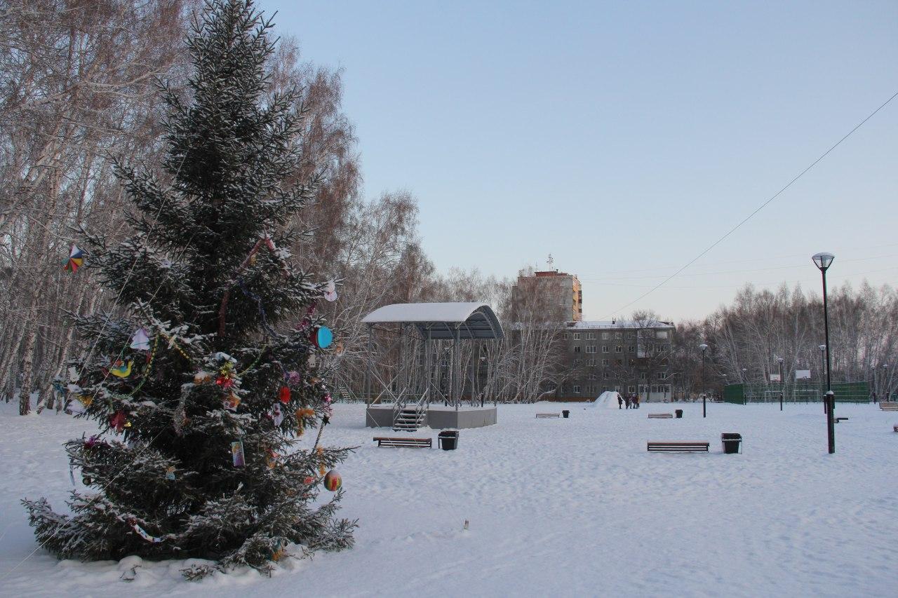 За омичами, которые пойдут в парки и скверы, будут следить по камерам #Новости #Общество #Омск