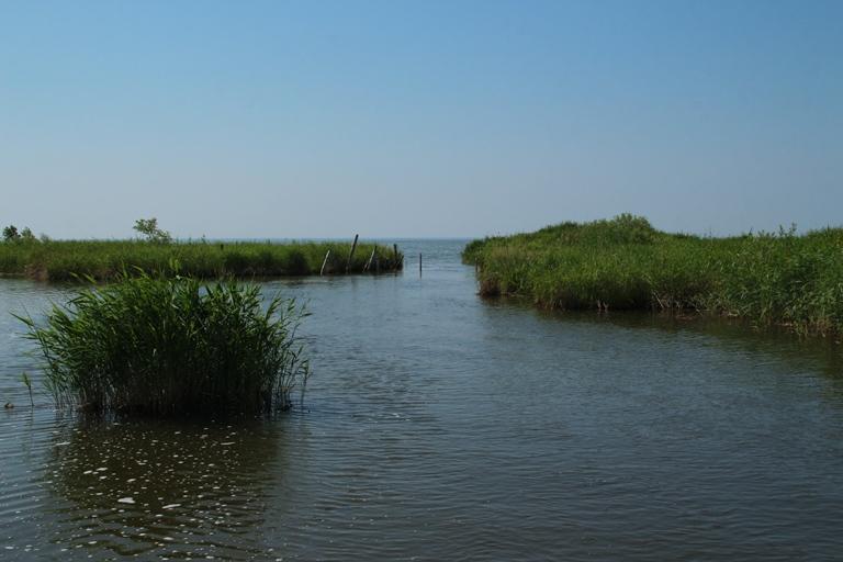 В омской реке марганца оказалось в 100 раз больше нормы #Омск #Общество #Сегодня