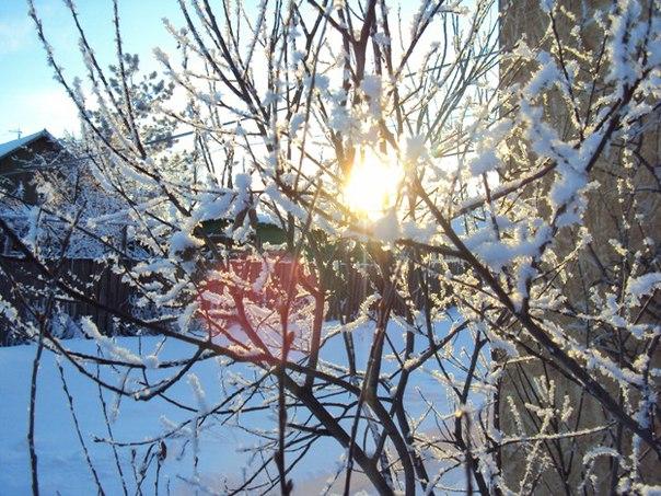 Первая весенняя неделя в Омской области будет теплой и солнечной #Омск #Общество #Сегодня