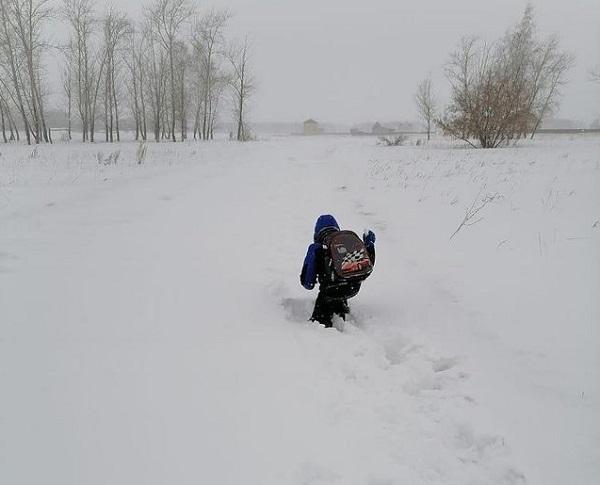 Прокуратура проверит сугробы, по которым дети в Омской области пробираются в школу #Новости #Общество #Омск
