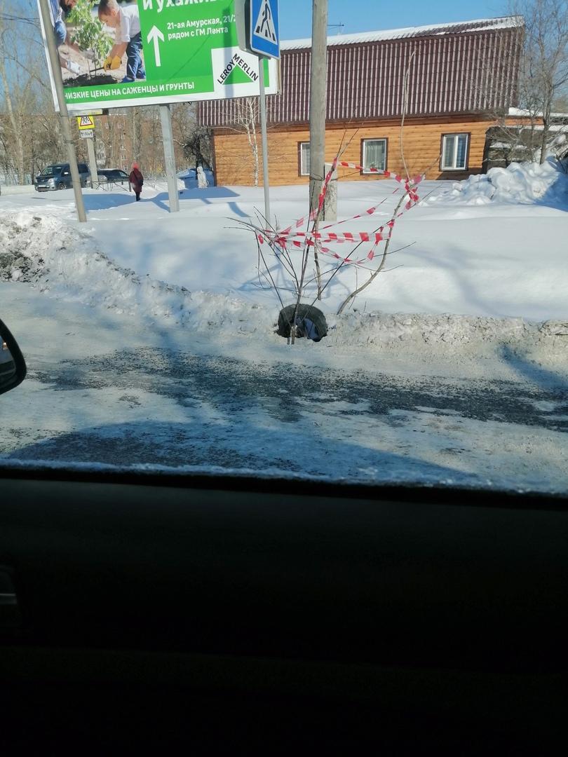 В люк на омской дороге провалилась машина, но его лишь прикрыли ветками #Омск #Общество #Сегодня