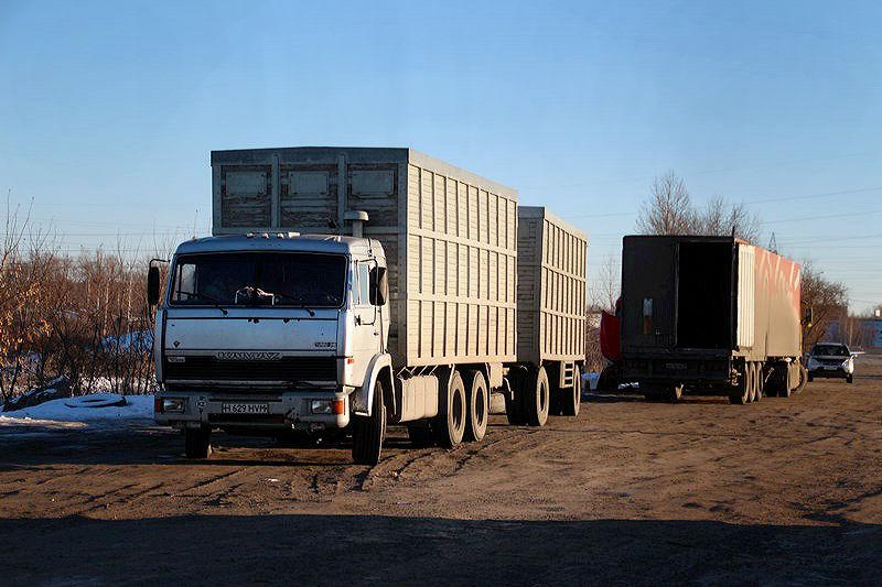 В Омской области водители грузовиков за день 200 раз нарушили ПДД #Новости #Общество #Омск