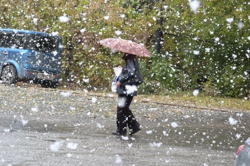 Зима не спешит покидать Омскую область #Омск #Общество #Сегодня