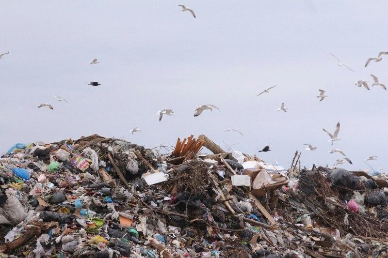 В Омской области появятся мусорные заводы и полигоны, как в Америке #Омск #Общество #Сегодня