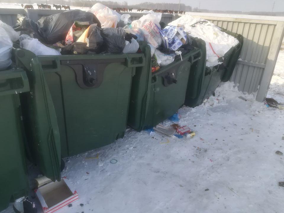 В Омске с одной из площадок мусор вывозят 4 раза в сутки #Новости #Общество #Омск