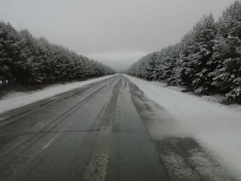 Мокрый снег, дождь, гололедица: начало апреля «порадует» омичей непогодой #Омск #Общество #Сегодня