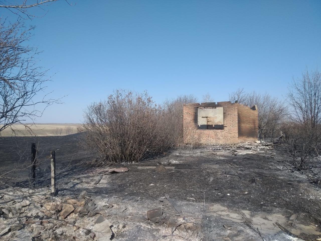 Пожар под Омском охватил 20 дачных участков #Омск #Общество #Сегодня