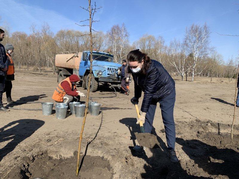 Фадина посадила яблони в омском Парке Победы #Омск #Общество #Сегодня