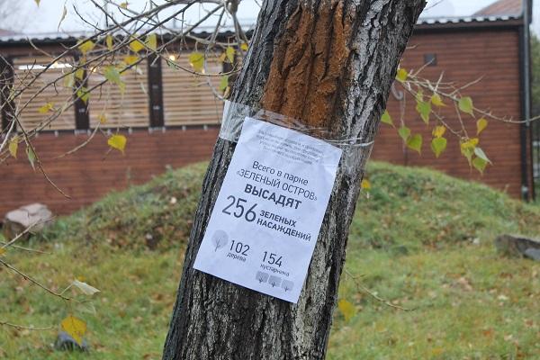 Омск снова хотят сделать «городом-садом» #Омск #Общество #Сегодня