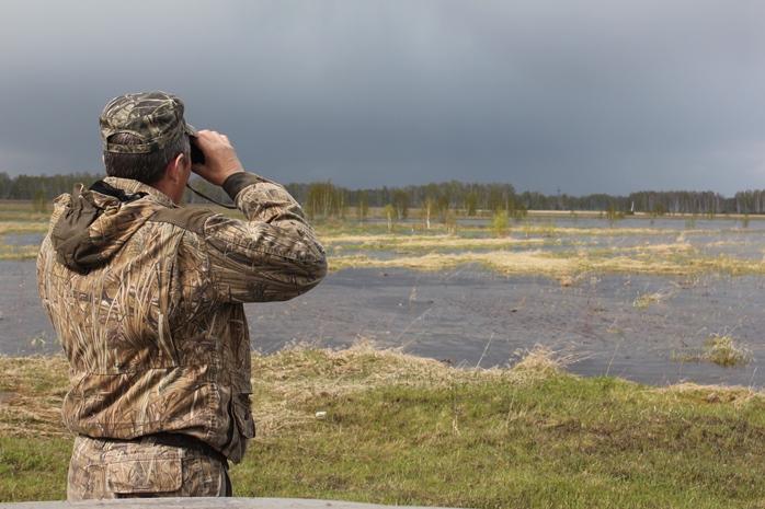 В весенний сезон охоты омичи начали стрелять по краснокнижным птицам #Омск #Общество #Сегодня