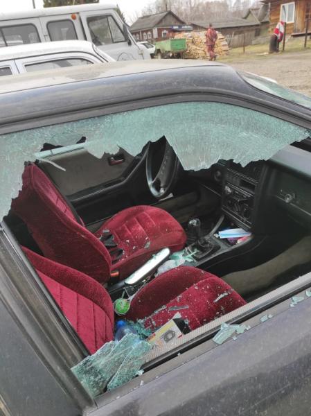 Двое пьяных омичей разбили 4 машины и повесили на шею собаке госномер #Омск #Общество #Сегодня