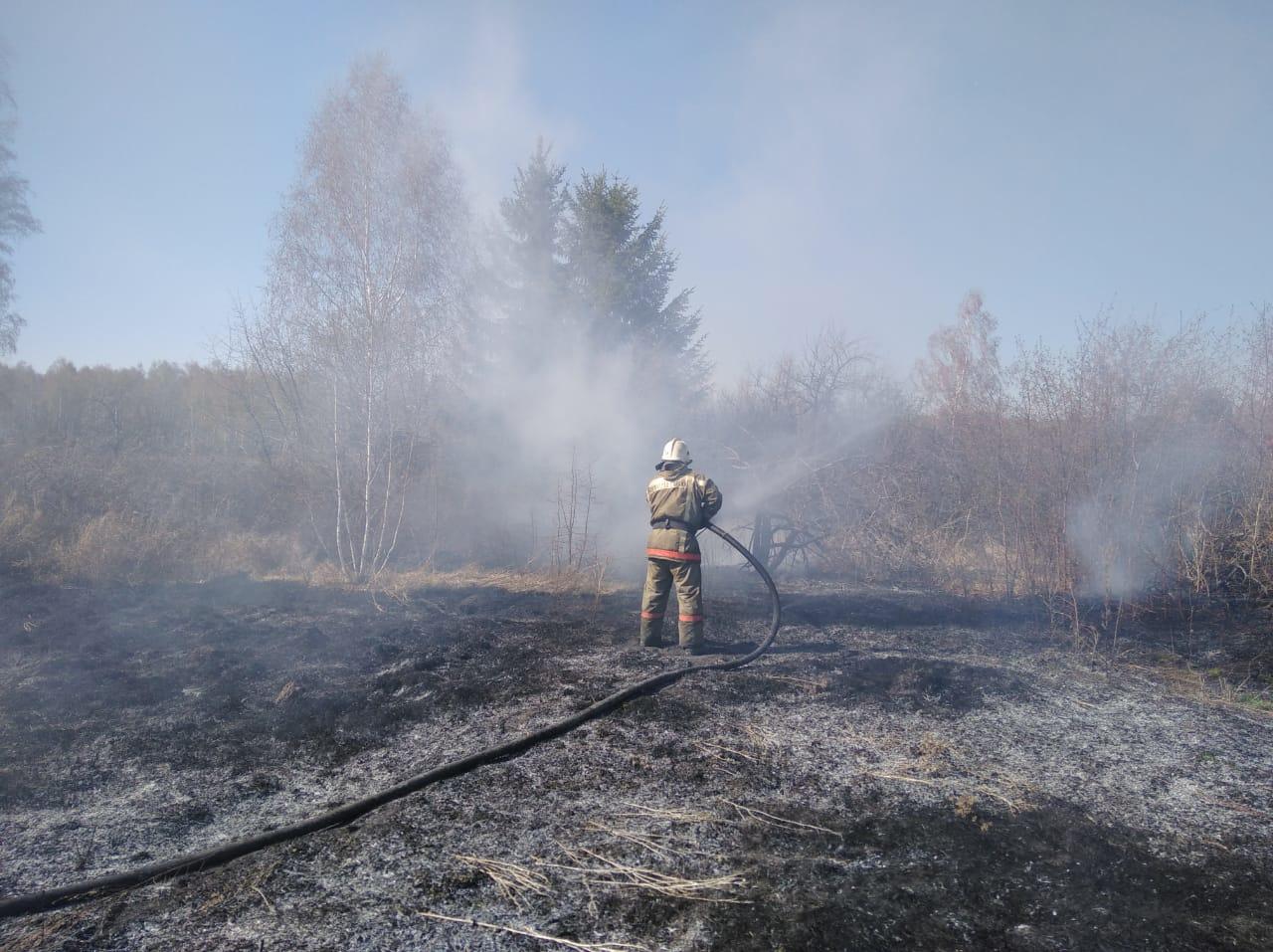 В Омской области из-за сухой травы в одном СНТ сгорело 5 дач #Новости #Общество #Омск