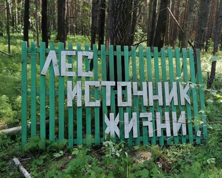 Омский министр ел «чойс» и спал под березой, чтобы выжить в лесу #Омск #Общество #Сегодня