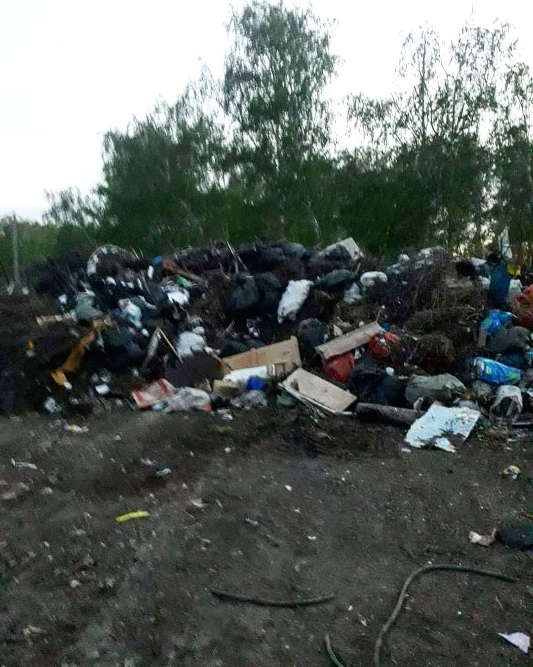Полежаев пожаловался на огромную свалку недалеко от его дома #Омск #Общество #Сегодня