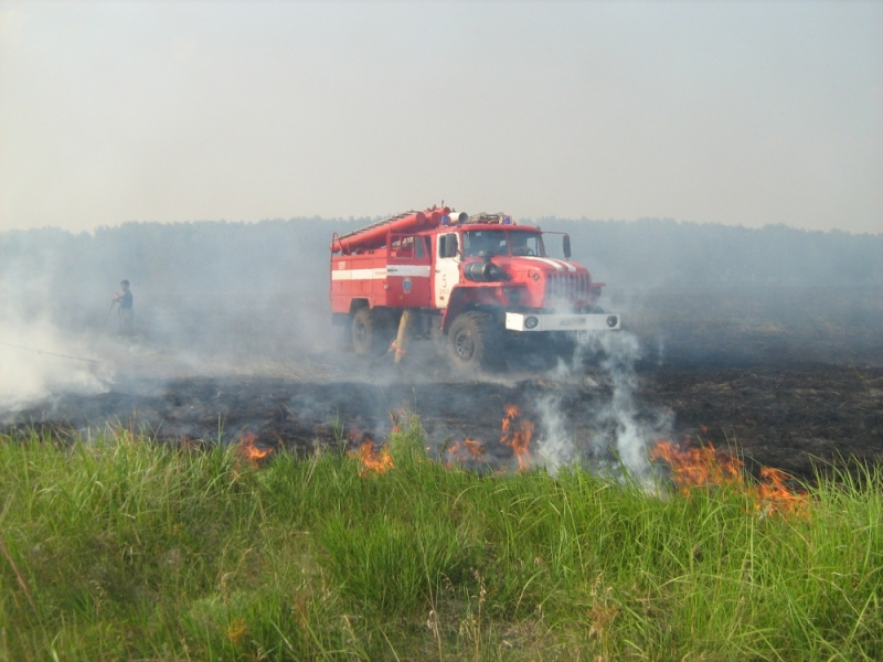 Буркову поручили лично контролировать соблюдение запрета на выжигание сухой травы #Новости #Общество #Омск