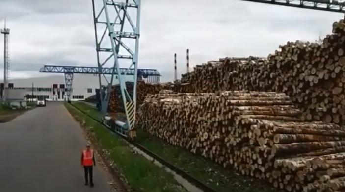 В Омской области построят фанерный завод и создадут 650 рабочих мест