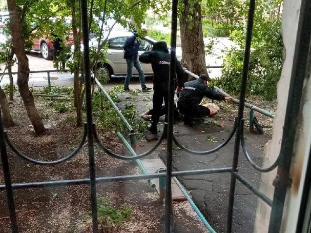 Омские полицейские спасли пенсионерку, на которую упала ветка тополя #Омск #Общество #Сегодня