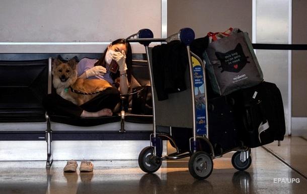 США вводят запрет на ввоз собак из ряда стран, включая Украину