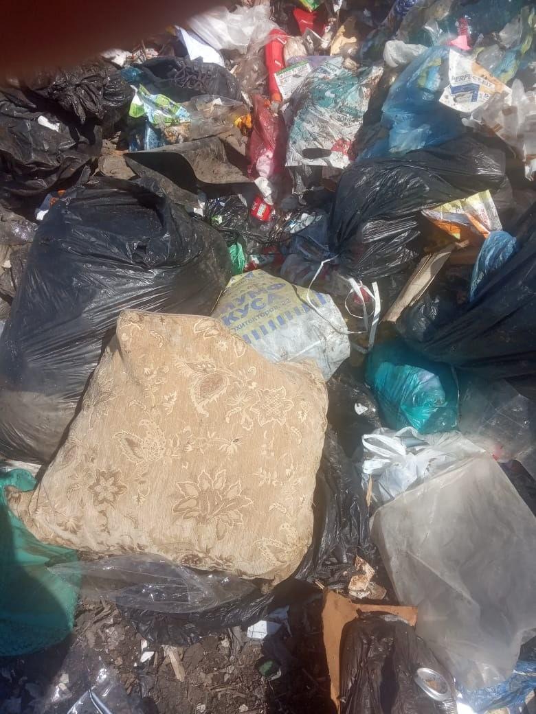 Омичка выбросила в мусор подушку с 800 тысячами рублей #Омск #Общество #Сегодня