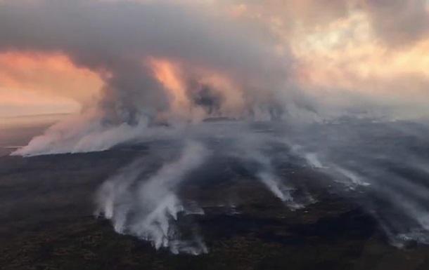 В России горят больше 1,5 млн гектаров леса
