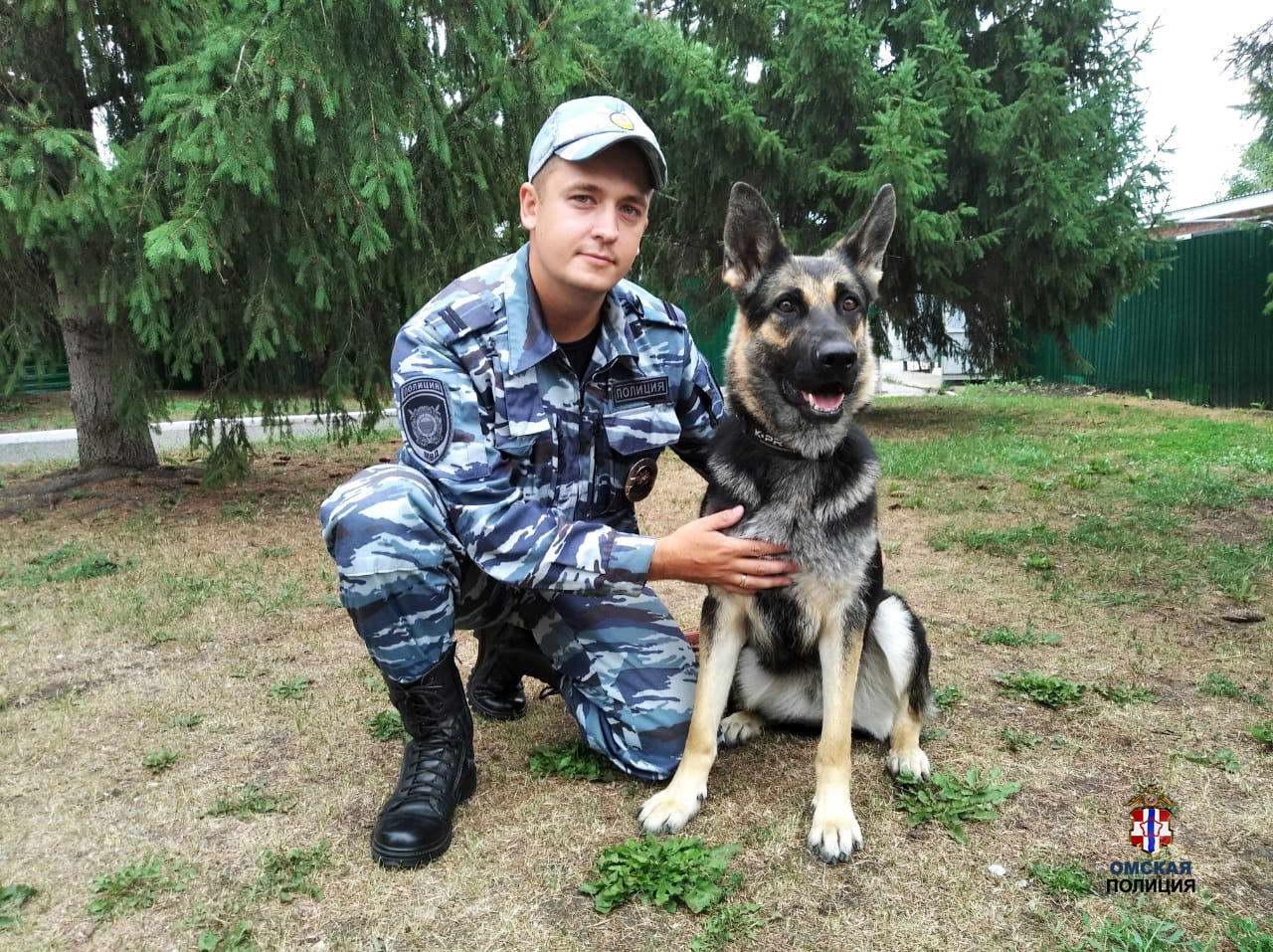 В Омске полицейская овчарка, едва закончив обучение, раскрыла первое преступление #Омск #Общество #Сегодня