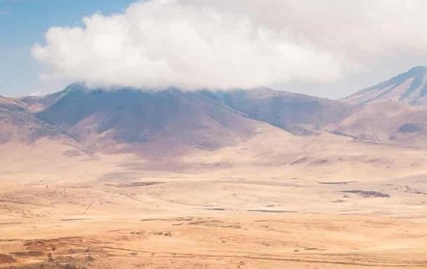 В Танзании львы разорвали детей, искавших домашний скот