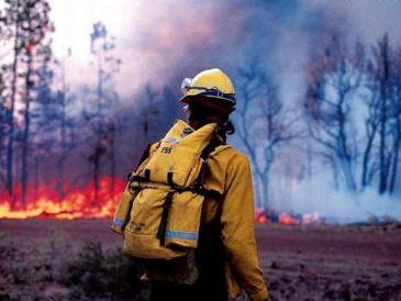 На юге Омской области прогнозируют увеличение пожаров #Омск #Общество #Сегодня