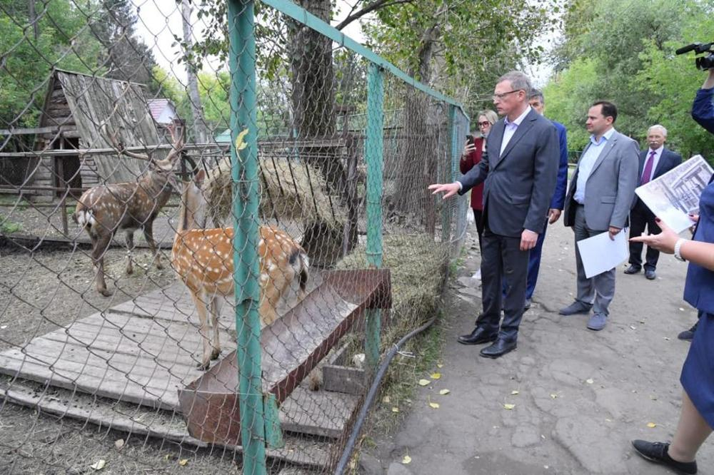 Обитатели Большереченского зоопарка будут жить в шикарных условиях #Омск #Общество #Сегодня