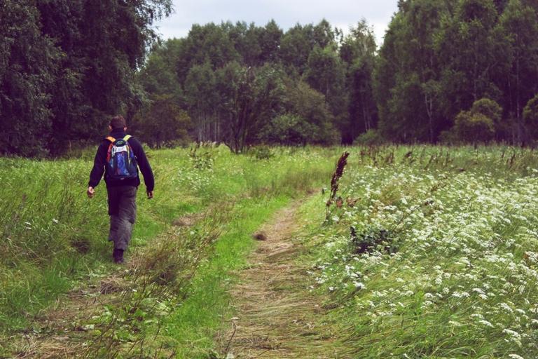 «Хватай собаку и беги!»: омские грибники рассказали о своих приключениях в лесу #Омск #Общество #Сегодня