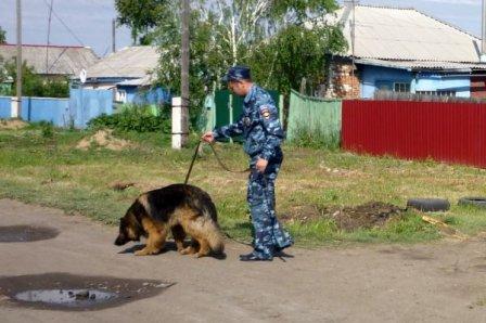 В Омске найдены тела детей, которые пропали без вести.