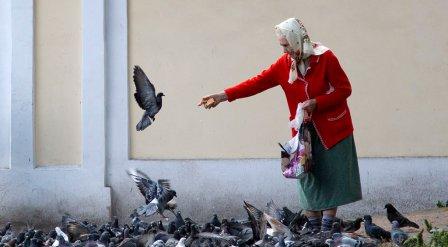 Омская область дала приют пожилым людям.