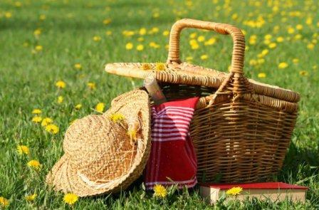 Городской пикник в Омске назначен на август.