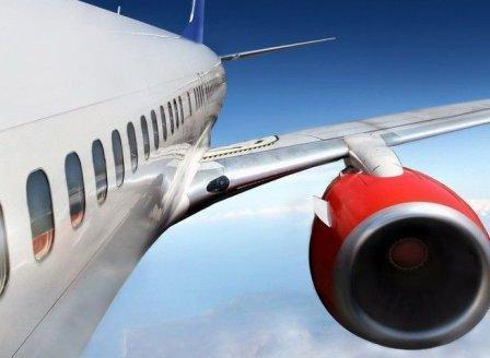 В турбину самолёта попала птица - Омск.