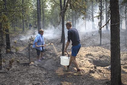 Глава Бурятии призвал жителей региона защитить леса от поджигателей