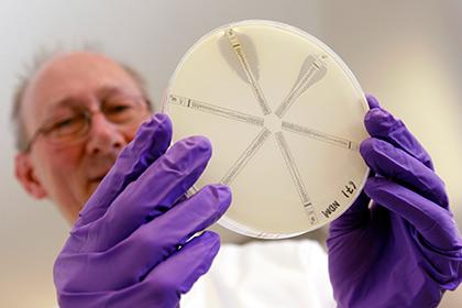Неуязвимые для любых антибиотиков бактерии начали распространяться по планете